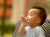 мальчик немногая смотря вверх Стоковая Фотография RF