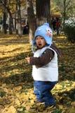 мальчик осени Стоковая Фотография RF