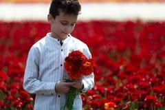 Мальчик подростка собирая букет цветков в луге на солнечный день погоды для его матери стоковое фото