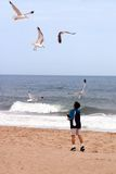 мальчик птиц пляжа Стоковые Фотографии RF