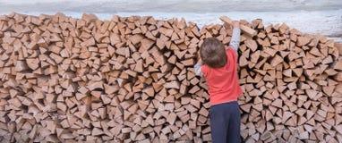 Мальчик собирая швырок Древесина, который сгорели как топливо Швырок штабелированный вдоль стены Естественное прожитие Резать дер стоковые фотографии rf