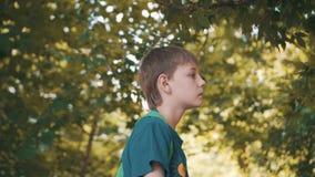 Мальчик стоит в парке и смотрит внимательно на листьях Задумчивое настроение Славные съемки сток-видео