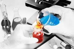 Мальчик студента химика лить голубую жидкость в стекле beger к химии склянки erlenmeyer с красной жидкостью на биохимическом эксп стоковые изображения rf