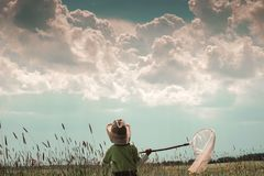 Мальчик с сетью бабочки Стоковые Изображения