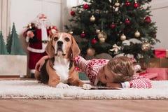 Мальчик с собакой бигля на рождестве Стоковое Изображение