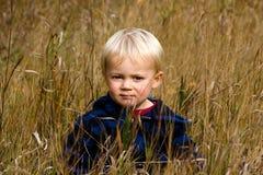 Мальчик травы Стоковые Фото