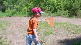 Мальчик уловил малую рыбу Ребенок идет на след леса с задвижкой Красивейший ландшафт лета воссоздание обеда напольное сток-видео
