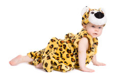 мальчик 7 времен как weared тигр месяцев Стоковое Фото