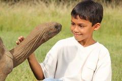 мальчик eyes гигантские детеныши черепахи взглядов Стоковые Фотографии RF