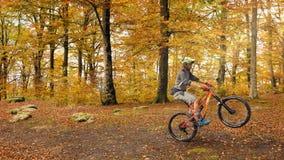 Мальчик MTB в лесе бука стоковое изображение