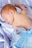 мальчик newborn Стоковое Изображение
