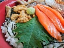 Мальчишка моря шара риса свежего сокровища моря японский сырцовый Salmon Стоковые Изображения