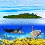Мальдивы Стоковая Фотография RF