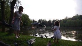 Мама и дочь идут в зеленый парк видеоматериал