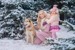 Мама и дочь идя собака осиплой породы в снежном парке стоковое фото