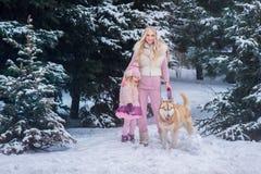 Мама и дочь идя собака осиплой породы в снежном парке стоковое фото rf