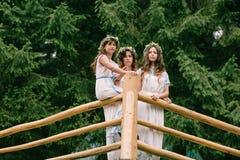 Мама и 2 дочери идя около озера Стоковое Изображение RF