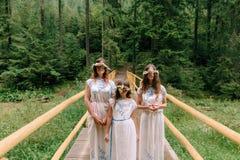 Мама и 2 дочери идя около озера Стоковая Фотография RF