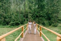 Мама и дочь идя около озера Стоковые Изображения RF