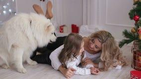 Мама и ребенок играя около рождественской елки с собакой сток-видео