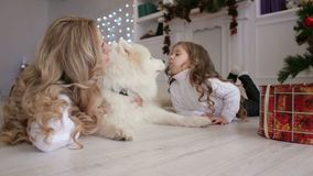 Мама и ребенок играя около рождественской елки с собакой акции видеоматериалы