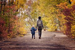 Мама и сын идут в парк осени задний взгляд Стоковое Изображение