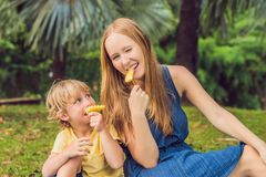 Мама и сын имели пикник в парке Съешьте здоровые плодоовощи - манго стоковое изображение rf