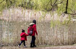 Мама & дочь идя в природу стоковая фотография rf