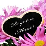 Мама quiero Te, я тебя люблю мама в испанском языке Стоковые Фото