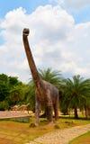 Маменчизавр динозавра Стоковое фото RF