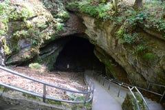 Мамонтовый национальный парк пещеры, США стоковое фото