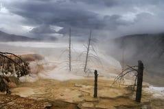 мамонтовый парк скачет термальные США yellowstone Стоковое фото RF