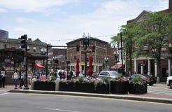МАМЫ Кембриджа, 30-ое июня: Квадрат Гарварда от Кембриджа городского в положении Massachusettes США Стоковая Фотография RF