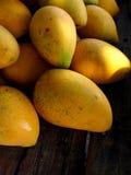 мангоы зрелые Стоковая Фотография RF