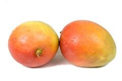 мангоы Стоковая Фотография
