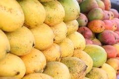 мангоы Стоковые Фотографии RF