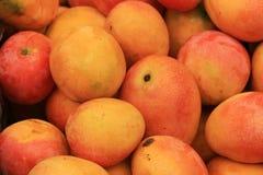 мангоы Стоковые Изображения RF