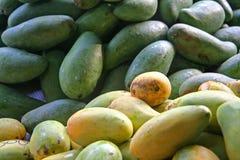 мангоы Стоковое Изображение