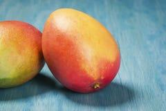 2 манго на голубой предпосылке Стоковое фото RF