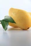 Манго с лист Стоковые Изображения