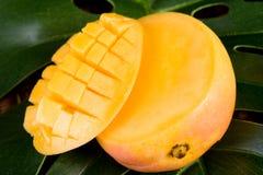 манго Стоковые Изображения