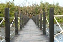 мангрова пущи моста деревянная Стоковые Фото