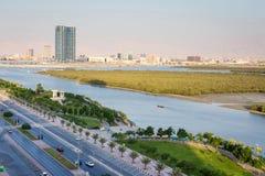 Мангровы в Рас-Аль-Хайма ОАЭ Стоковое Фото