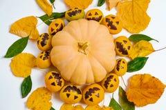 Мандала хеллоуина с поддельными тыквами и tangerines с покрашенный Стоковые Фотографии RF