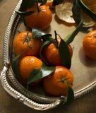 Мандарины цитрусовых фруктов в плите стоковое фото