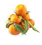 мандарины clementine стоковое изображение rf