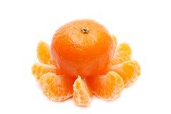 мандарин отрезает tangerine Стоковая Фотография