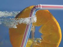 мандарин питья Стоковая Фотография RF