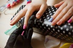 Маникюр женщины ручной работы розовый постепенный Стоковое Фото