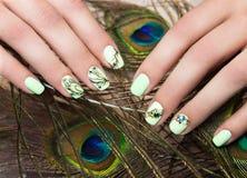 Маникюр дизайна искусства с пером павлина на женских руках Конец-вверх Ногти моды Стоковая Фотография RF